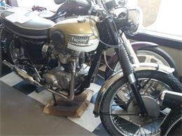 1964 Triumph T120TT (CC-1196841) for sale in Carnation, Washington