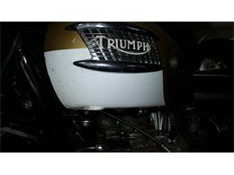 1964 Triumph T120TT (CC-1196841) for sale in Carnation, Washington
