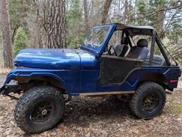 1976 Jeep CJ5 (CC-1197019) for sale in Cadillac, Michigan