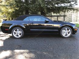 2007 Ford Mustang GT/CS (California Special) (CC-1190774) for sale in Napa Valley, California