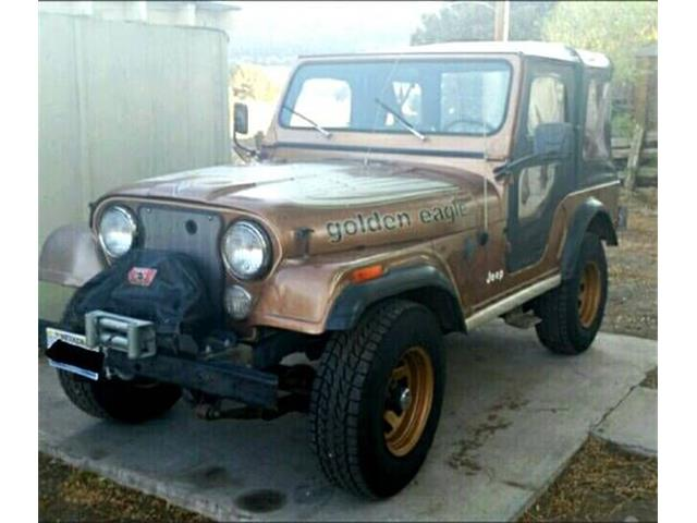 1979 Jeep CJ (CC-1197820) for sale in Cadillac, Michigan
