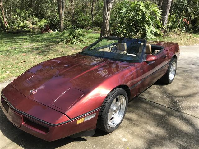 1987 Chevrolet Corvette (CC-1199101) for sale in Mount Dora, Florida