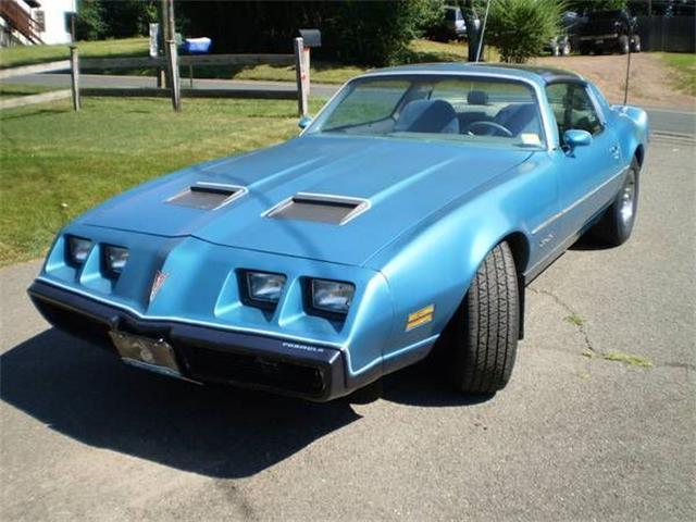 1979 Pontiac Firebird (CC-1201269) for sale in Cadillac, Michigan