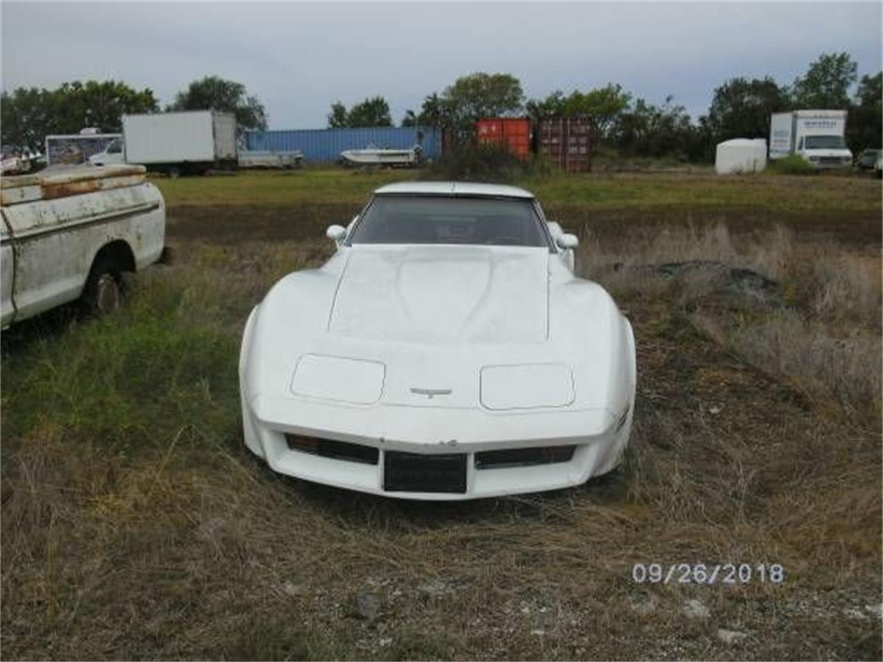 1980 Chevrolet Corvette (CC-1201562) for sale in Cadillac, Michigan