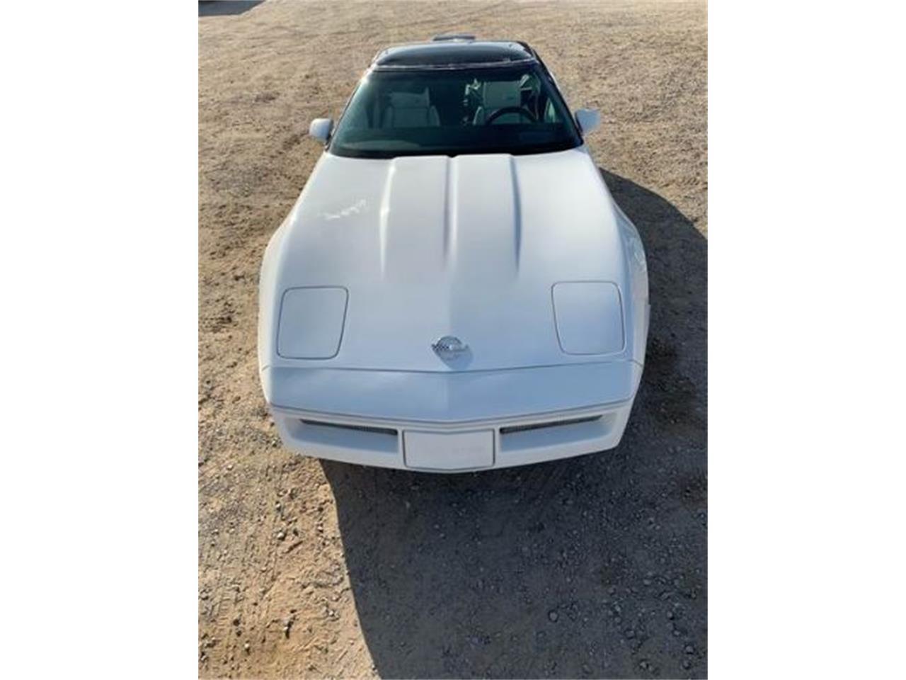 1988 Chevrolet Corvette (CC-1201566) for sale in Cadillac, Michigan
