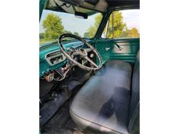 1955 Ford Pickup (CC-1201627) for sale in Cadillac, Michigan