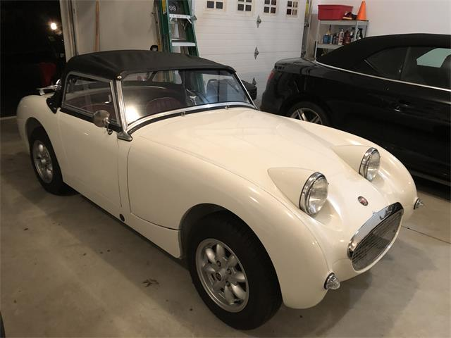 1961 Austin-Healey Bugeye (CC-1202002) for sale in Ludlow , Massachusetts
