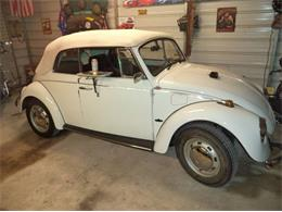 1969 Volkswagen Beetle (CC-1202332) for sale in Cadillac, Michigan