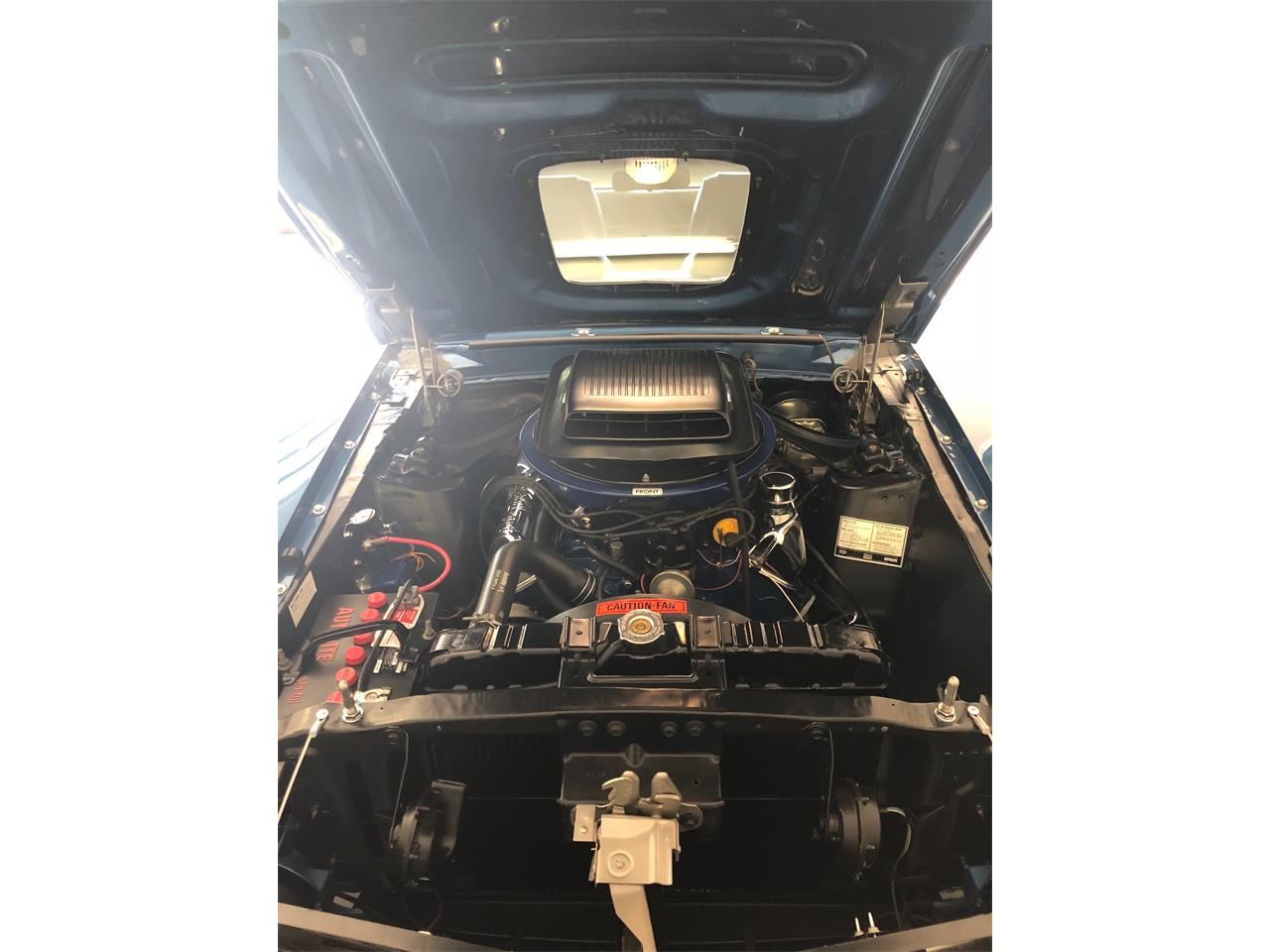 1969 Ford Mustang Mach 1 (CC-1203873) for sale in Houston , Texas