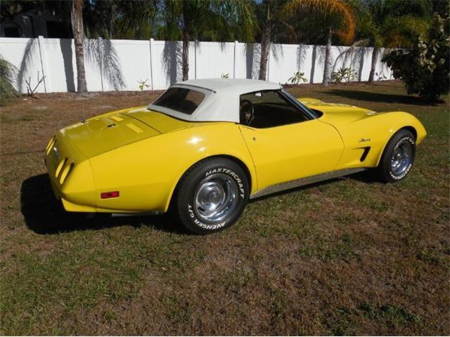 1975 Chevrolet Corvette (CC-1204451) for sale in Cadillac, Michigan