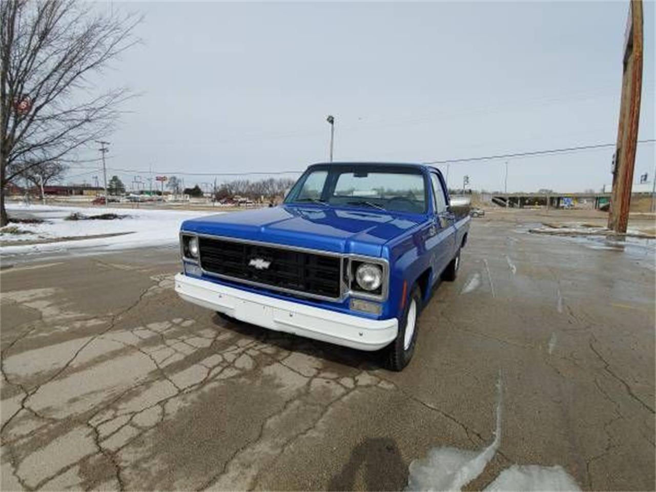 1978 Chevrolet C10 (CC-1204496) for sale in Cadillac, Michigan