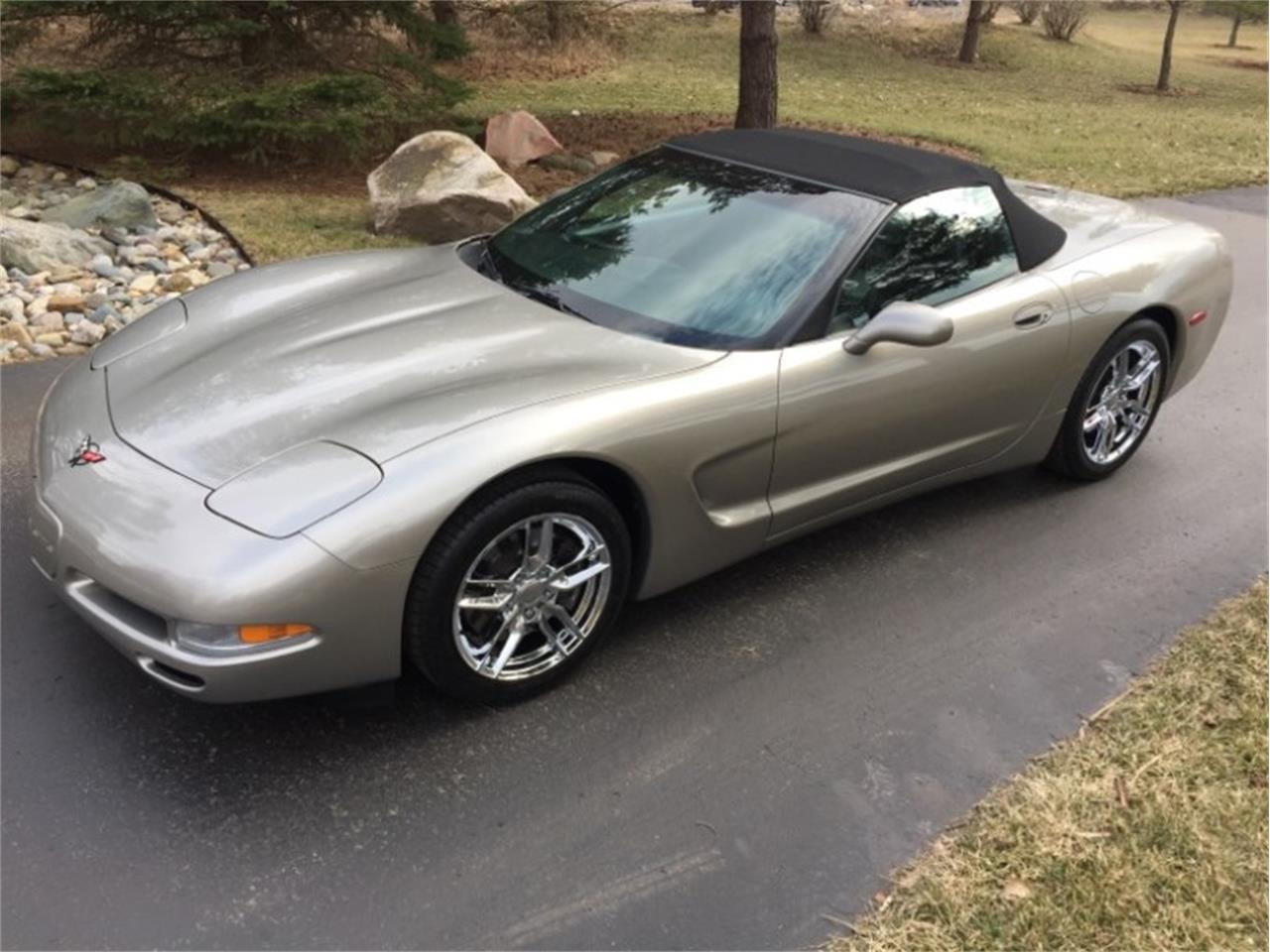 1999 Corvette For Sale >> 1999 Chevrolet Corvette For Sale Classiccars Com Cc 1205789