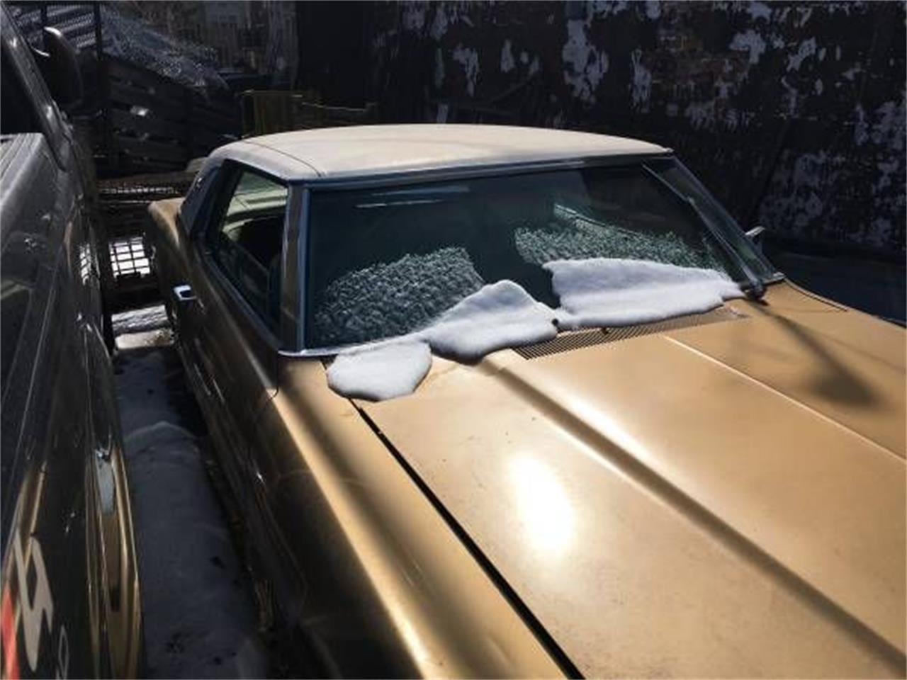 1968 Ford Thunderbird (CC-1206018) for sale in Cadillac, Michigan