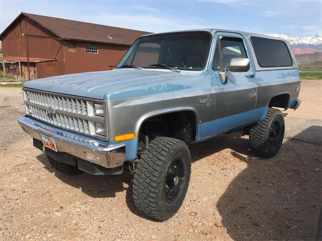 1982 Chevrolet Blazer (CC-1206123) for sale in Steven Point , Wisconsin