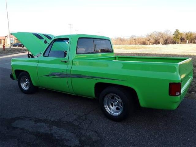 1978 Chevrolet Pickup (CC-1200631) for sale in Cadillac, Michigan