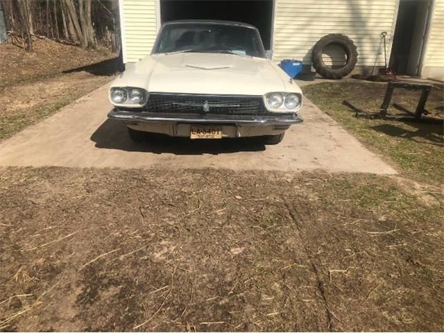 1966 Ford Thunderbird (CC-1206717) for sale in Cadillac, Michigan