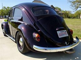 1964 Volkswagen Beetle (CC-1207497) for sale in Arlington, Texas