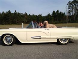 1959 Ford Thunderbird (CC-1208421) for sale in Ormond Beach, Florida