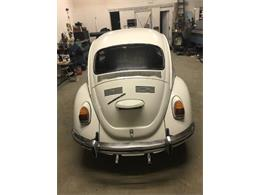 1969 Volkswagen Beetle (CC-1208579) for sale in Cadillac, Michigan