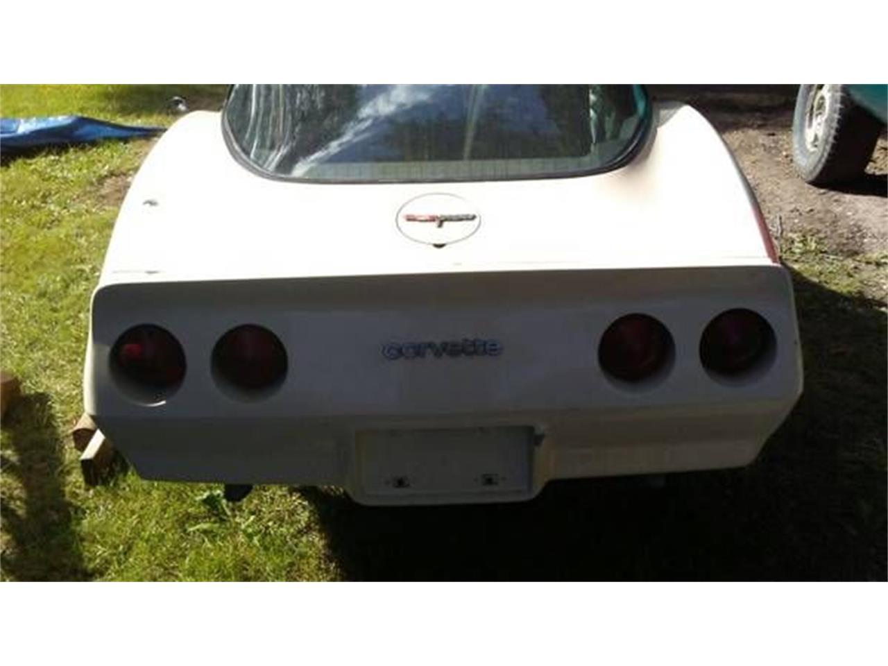 1981 Chevrolet Corvette (CC-1200086) for sale in Cadillac, Michigan