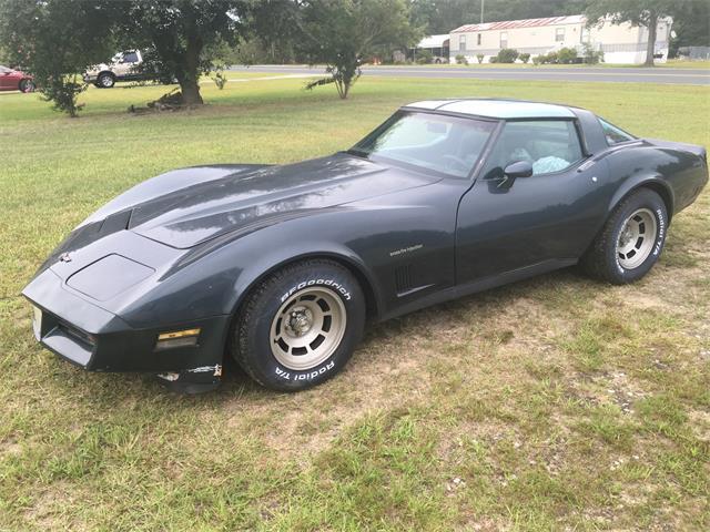 1982 Chevrolet Corvette (CC-1200873) for sale in New Port Richey, Florida