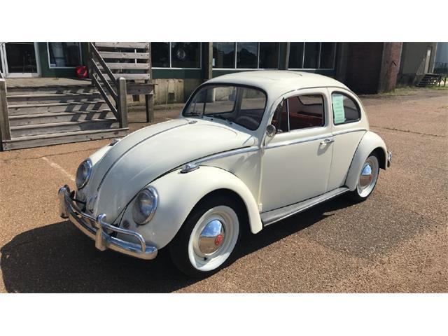 1964 Volkswagen Beetle (CC-1209375) for sale in Batesville, Mississippi