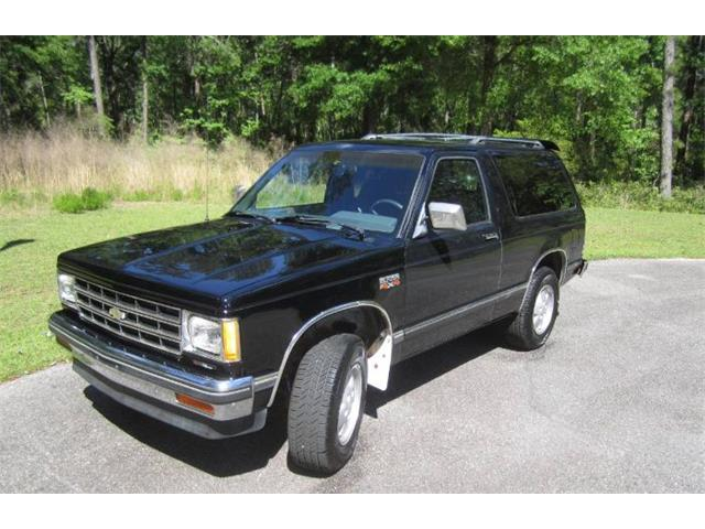 1987 Chevrolet Blazer (CC-1211510) for sale in Cadillac, Michigan