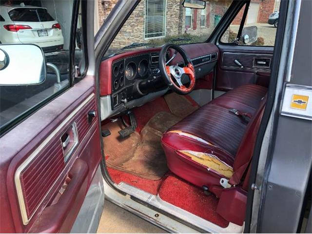 1979 Chevrolet C10 (CC-1211559) for sale in Cadillac, Michigan