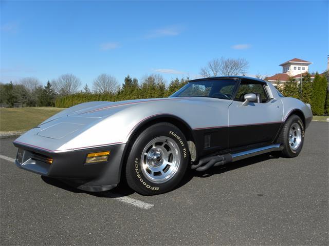 1981 Chevrolet Corvette (CC-1212228) for sale in Perkasie, Pennsylvania