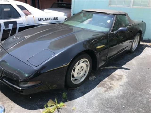 1984 Chevrolet Corvette (CC-1212345) for sale in Miami, Florida