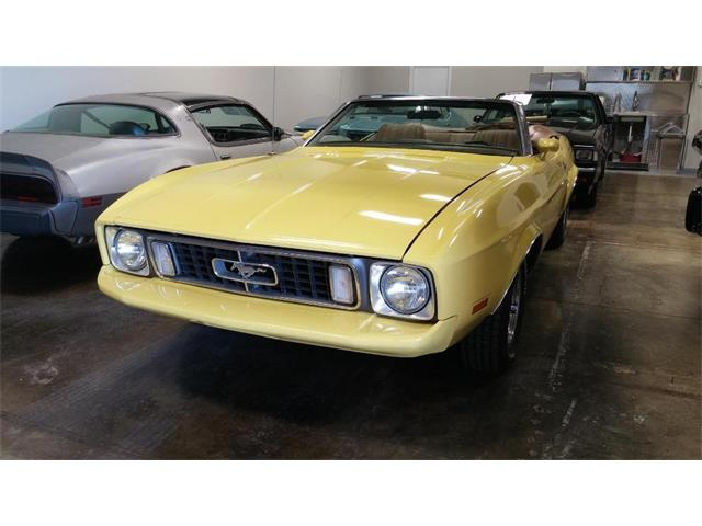 1973 Ford Mustang (CC-1212743) for sale in Atlanta, Georgia