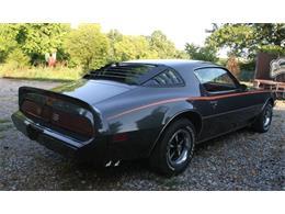 1980 Pontiac Firebird (CC-1213536) for sale in Cadillac, Michigan
