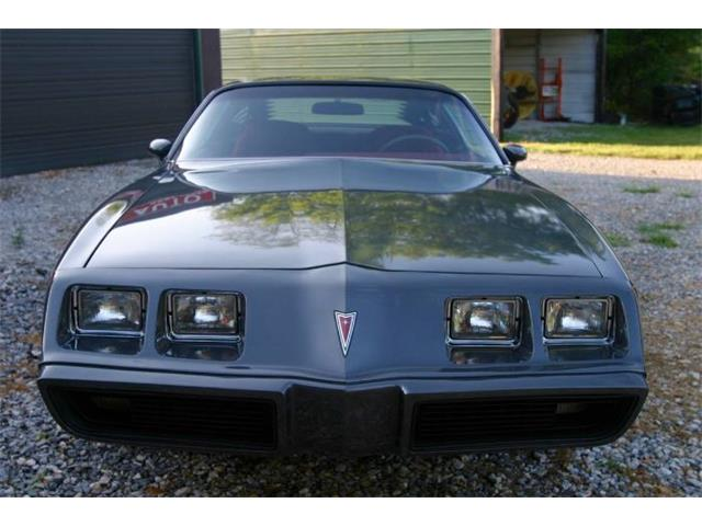1980 Pontiac Firebird (CC-1213536) for sale in Cadillac, Michigan
