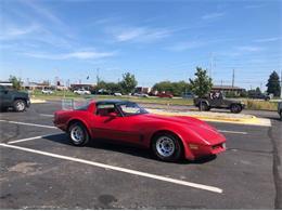 1981 Chevrolet Corvette (CC-1213655) for sale in Cadillac, Michigan