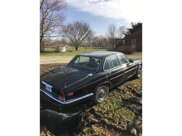 1986 Jaguar XJ6 (CC-1213690) for sale in Cadillac, Michigan