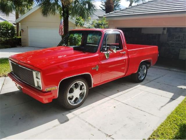 1987 Chevrolet K-10 (CC-1213697) for sale in Cadillac, Michigan