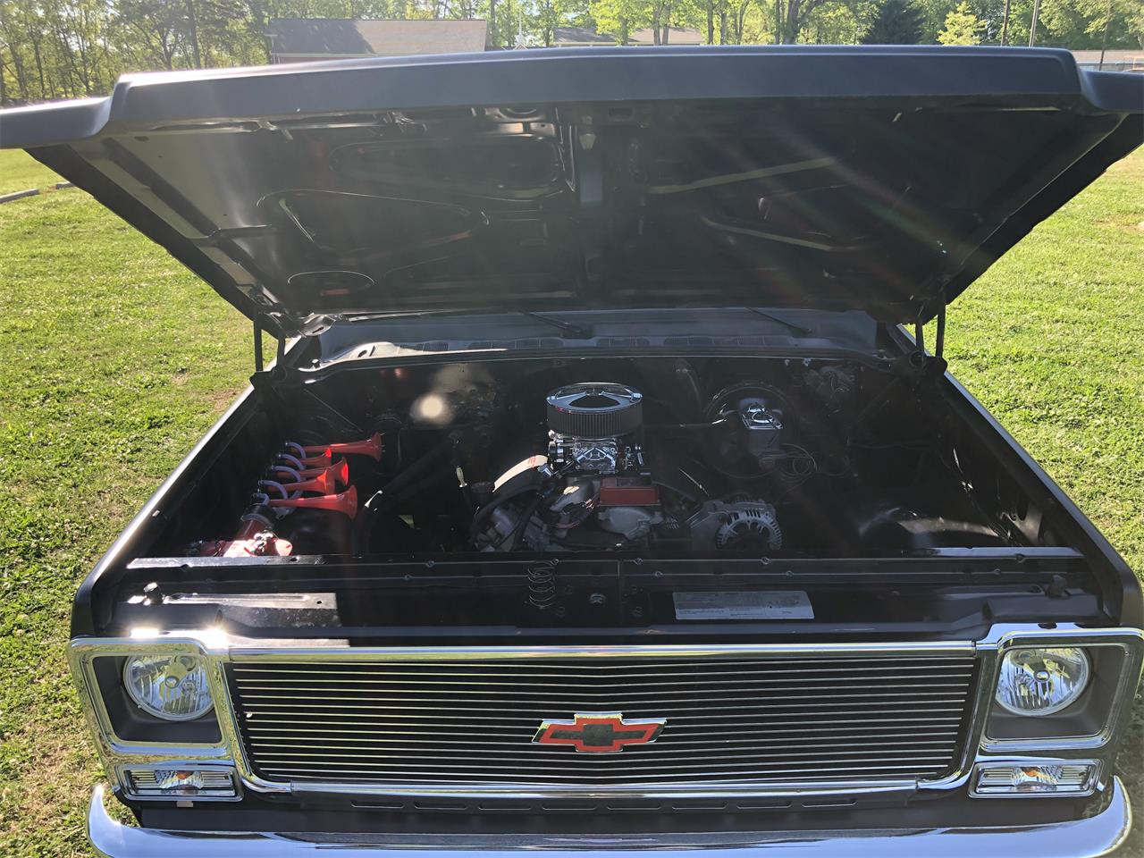 1979 Chevrolet C10 (CC-1210372) for sale in Greenville, South Carolina