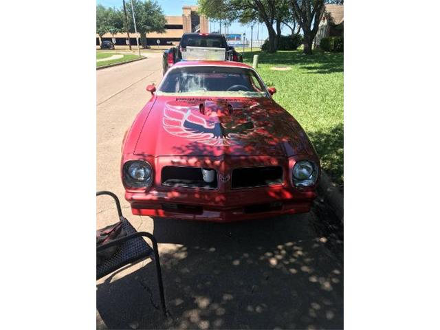 1976 Pontiac Firebird Trans Am (CC-1213902) for sale in Cadillac, Michigan