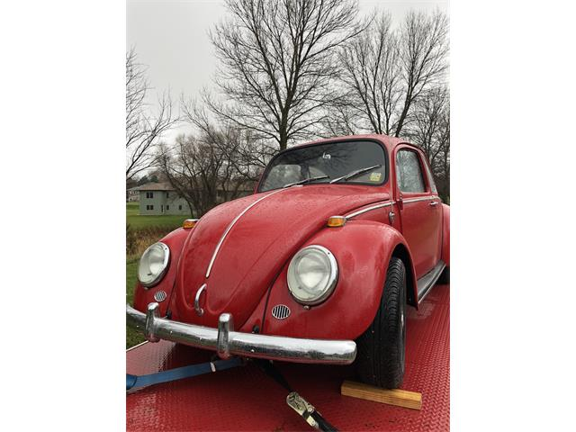 1966 Volkswagen Beetle (CC-1214066) for sale in Sioux Falls, South Dakota