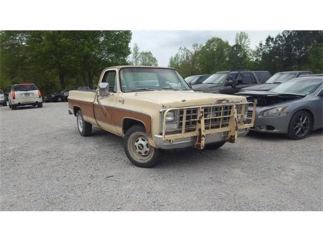 1980 Chevrolet C20 (CC-1214685) for sale in Cadillac, Michigan