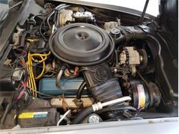 1980 Chevrolet Corvette (CC-1215573) for sale in Cadillac, Michigan