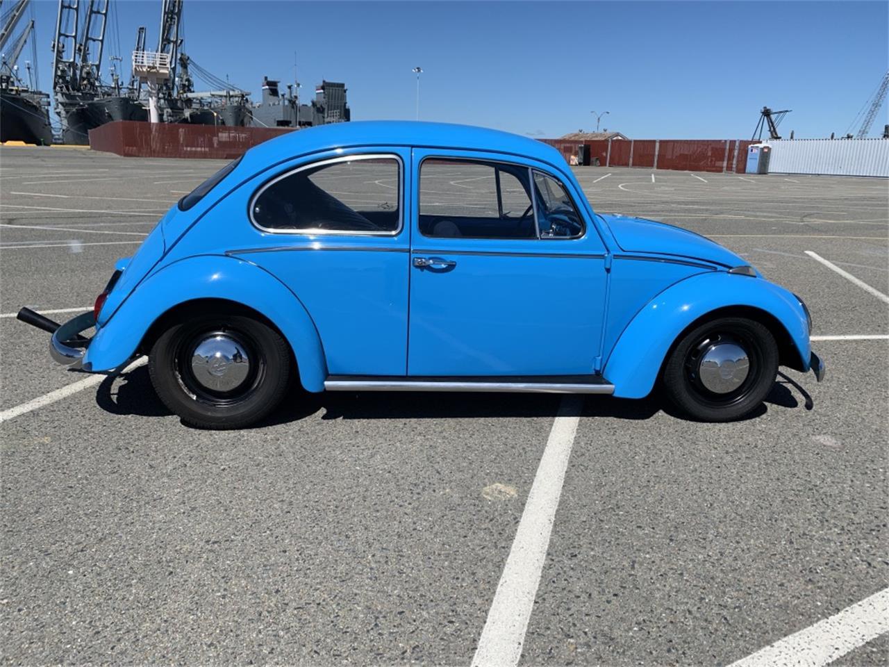 1966 Volkswagen Beetle (CC-1215798) for sale in Alameda, California