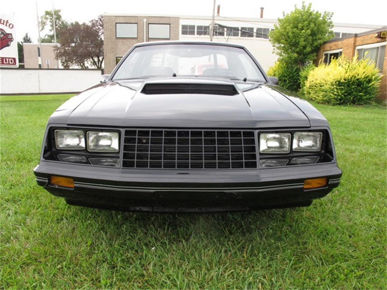 1979 Ford Mustang (CC-1216331) for sale in Troy, Michigan