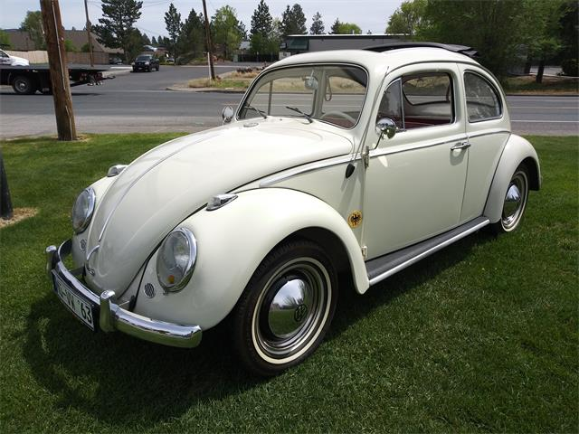 1963 Volkswagen Beetle (CC-1216774) for sale in Bend, Oregon