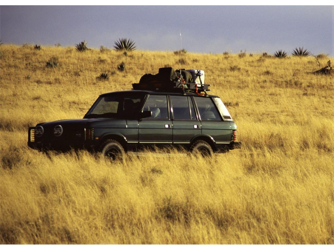 1995 Land Rover Range Rover (CC-1217986) for sale in Paradise Valley, Arizona