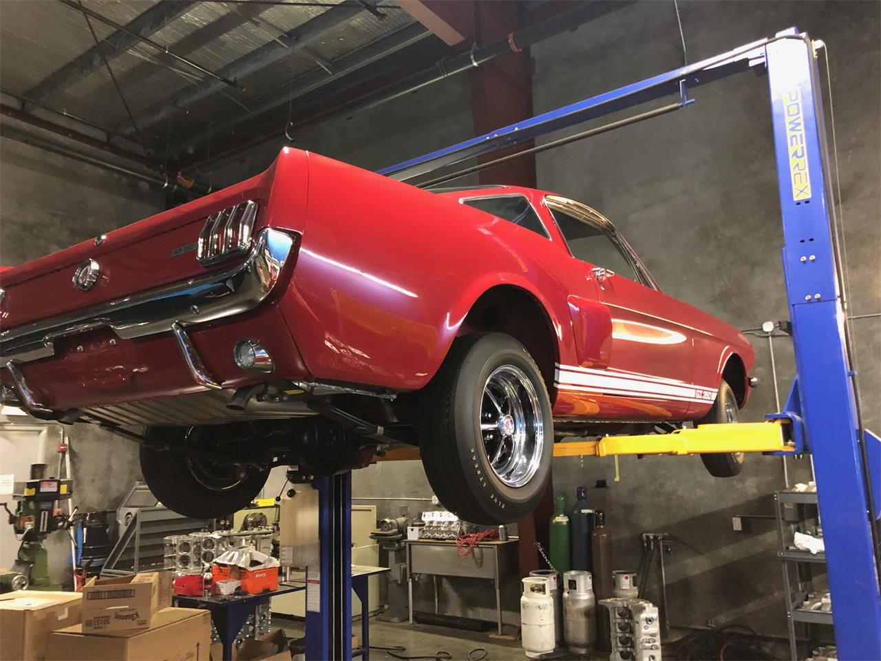 1966 Shelby GT350 (CC-1218897) for sale in Napa Valley, California
