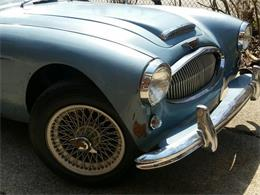 1963 Austin-Healey 3000 Mark II (CC-1218941) for sale in WILLOUGHBY, Ohio