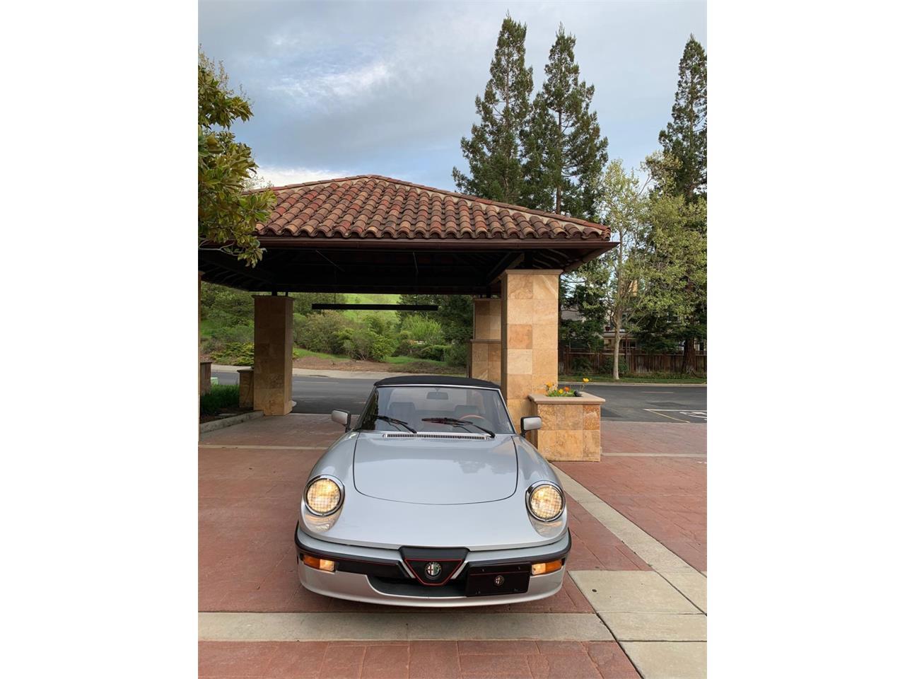 1990 Alfa Romeo Spider (CC-1219208) for sale in Danville, California
