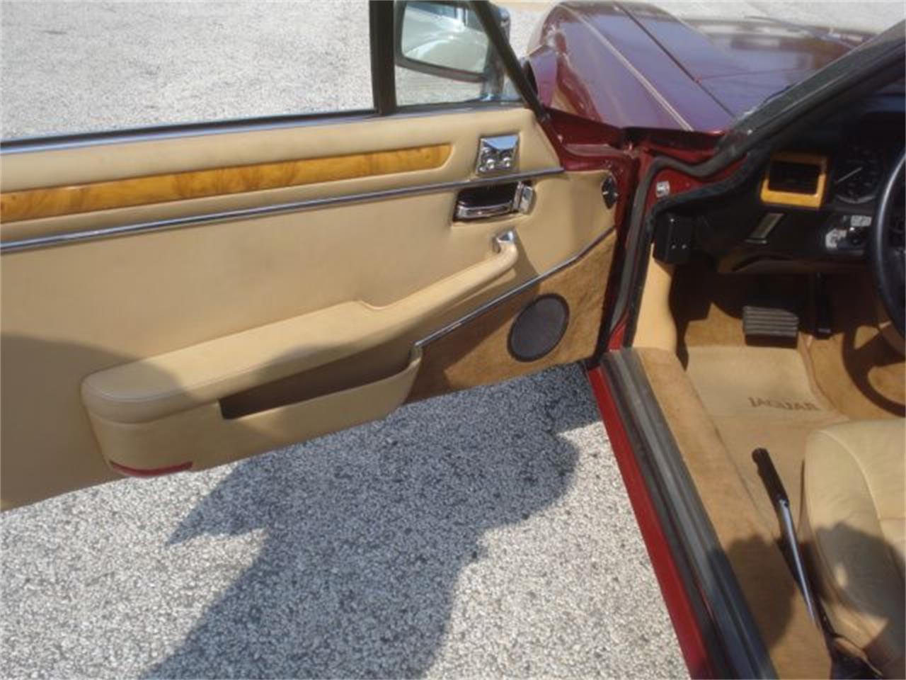 1984 Jaguar XJS (CC-1219590) for sale in Stratford, New Jersey