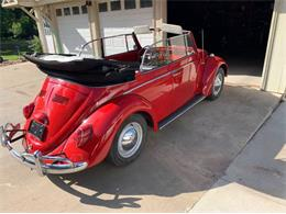 1965 Volkswagen Beetle (CC-1219849) for sale in Cadillac, Michigan